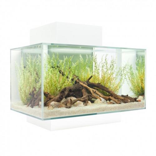 Fluval Edge White Aquarium 23 Litre