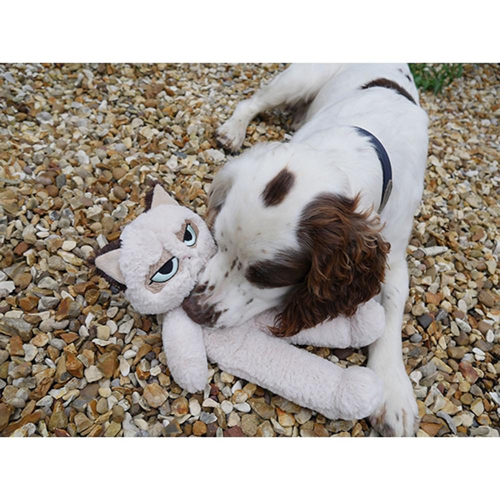 Grumpy Cat Floppy Plush Cat Grumpy Cat Dog Toy