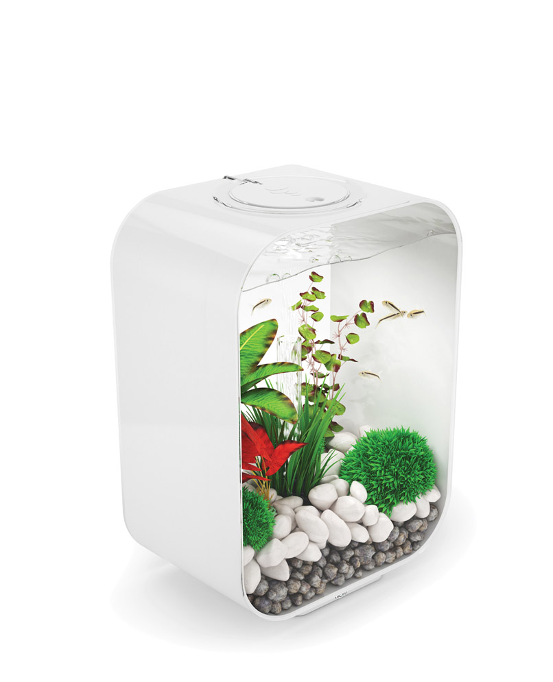 Biorb life for Aquarium boule 20 litres